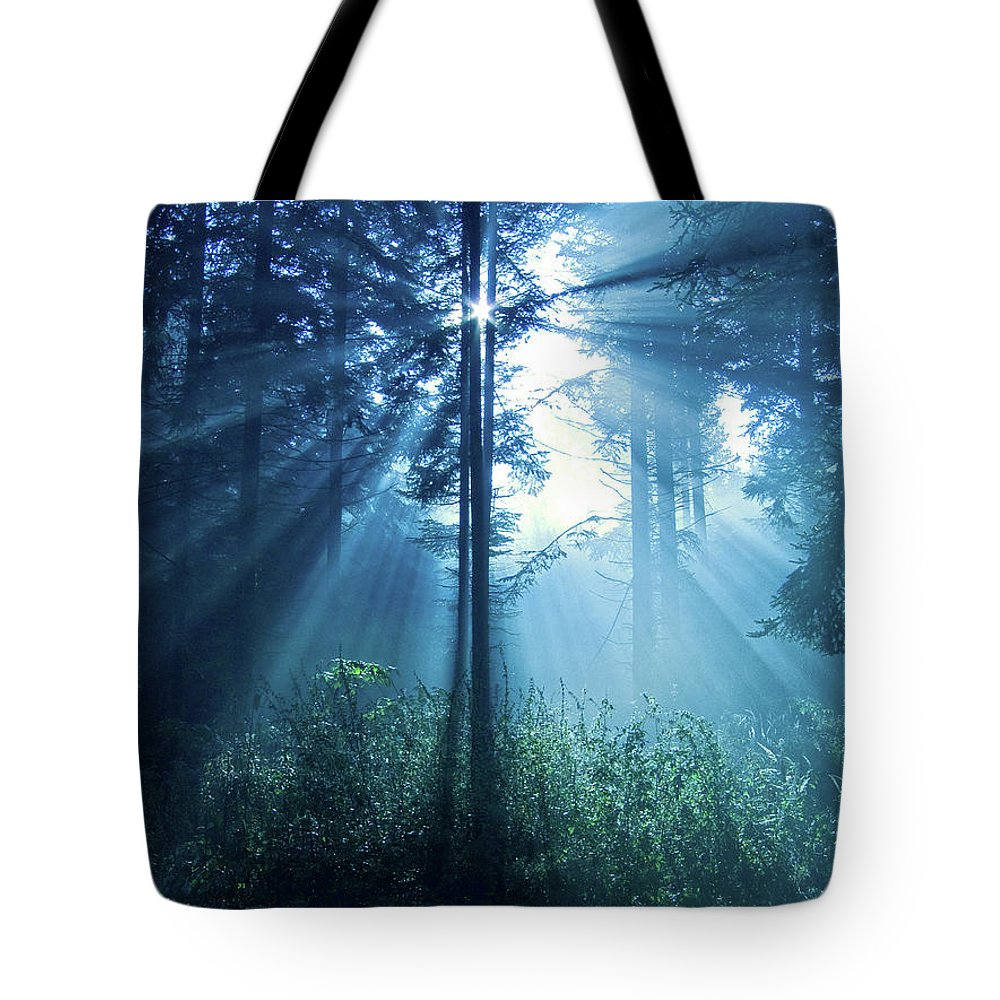 Nature Tote Bag featuring the photograph Magical Light by Daniel Csoka