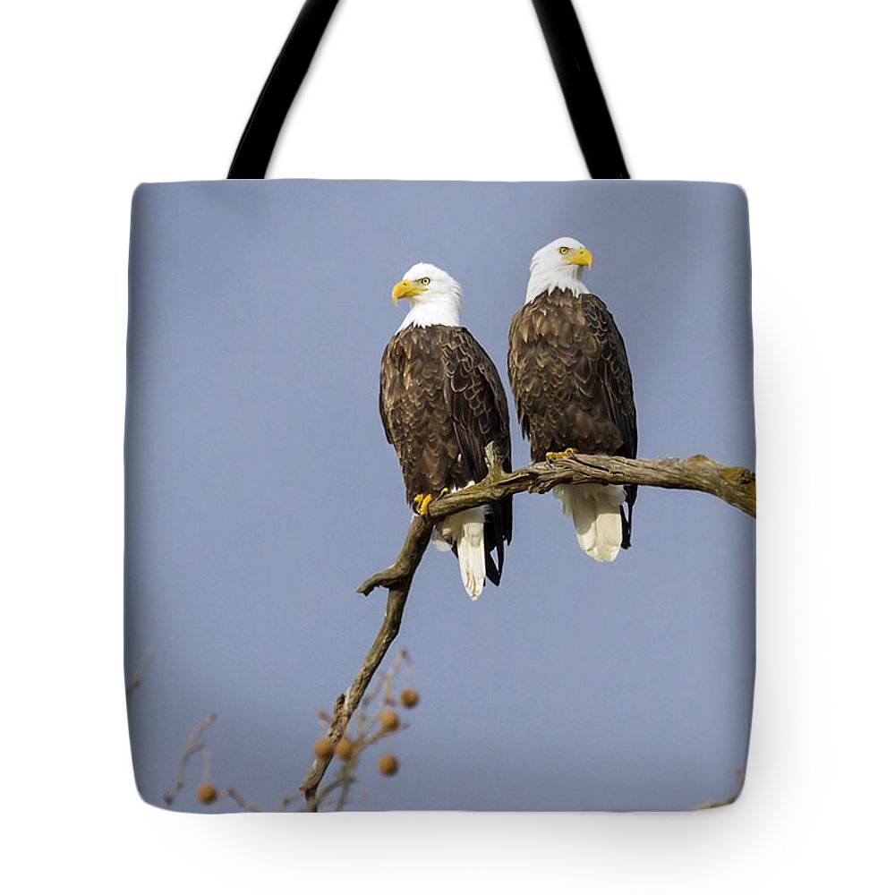 Eagle Tote Bag featuring the photograph Majestic Beauty 5 by David Lester
