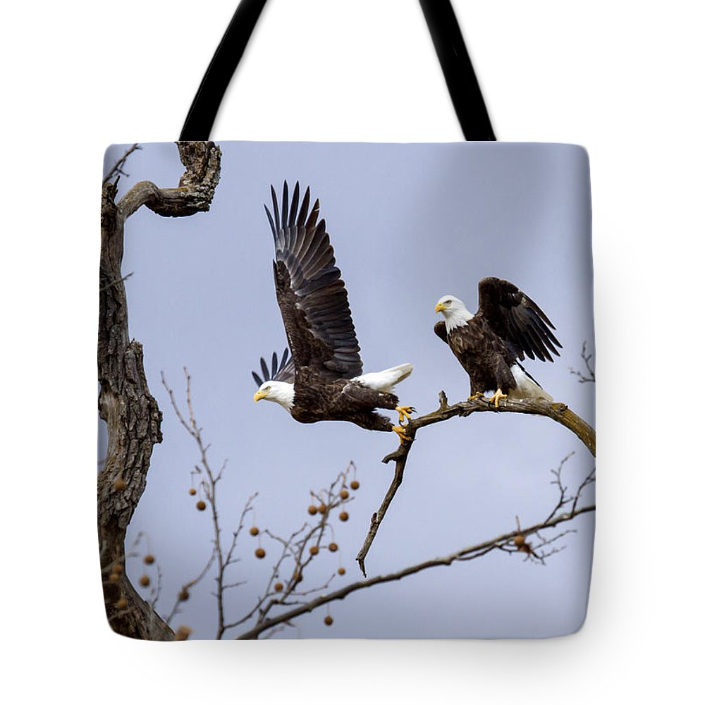 Eagle Tote Bag featuring the photograph Majestic Beauty by David Lester