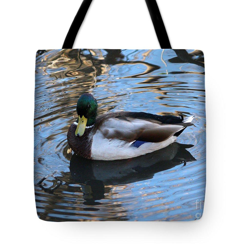 Mallards Tote Bag featuring the photograph Mallard Drake Duck by Lori Tordsen