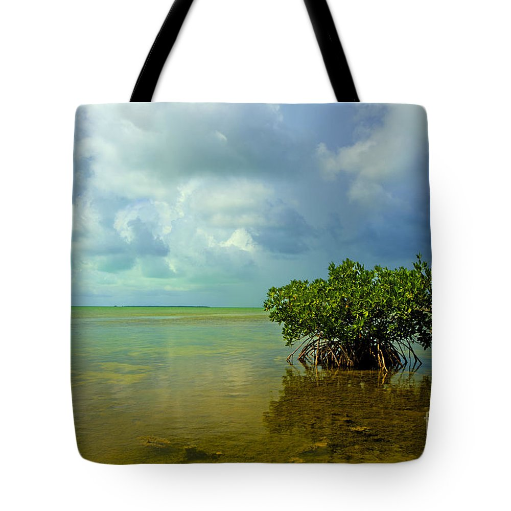 Mangrove Tote Bag featuring the photograph Mangrove by Bruce Bain