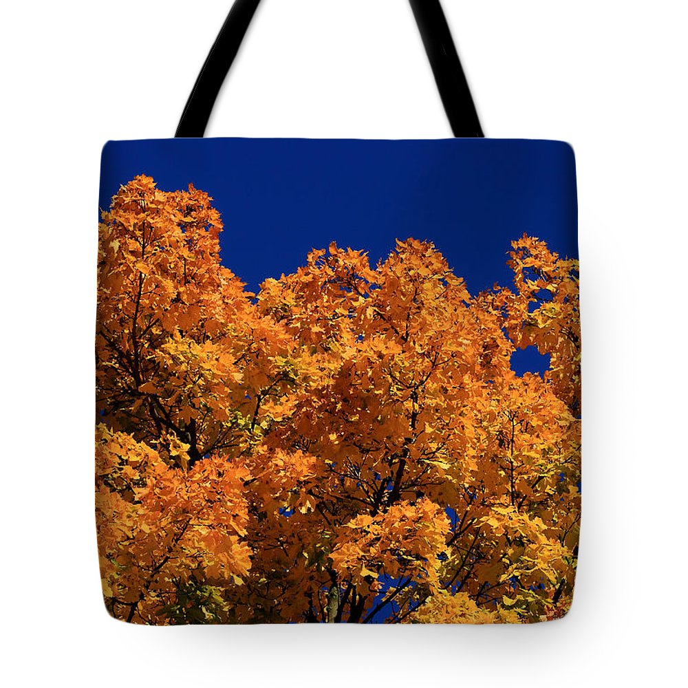 Maple Tree Tote Bag featuring the photograph Maple Tree In Autumn by David Dufresne