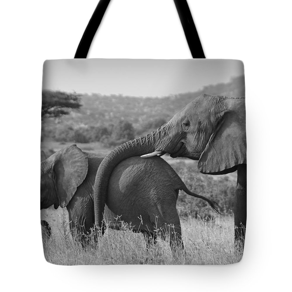 Africa Tote Bag featuring the photograph Maternal Love by Michele Burgess