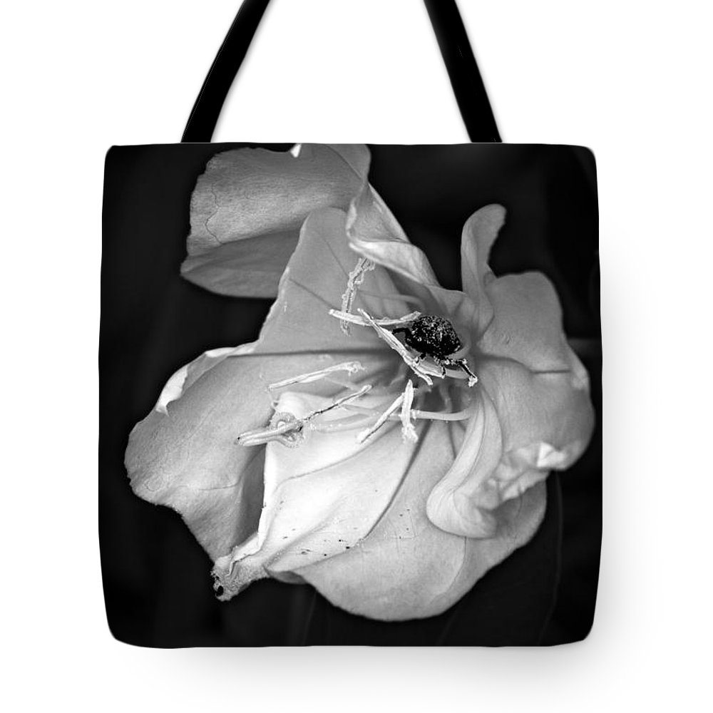 Blumwurks Tote Bag featuring the photograph Messy by Matthew Blum