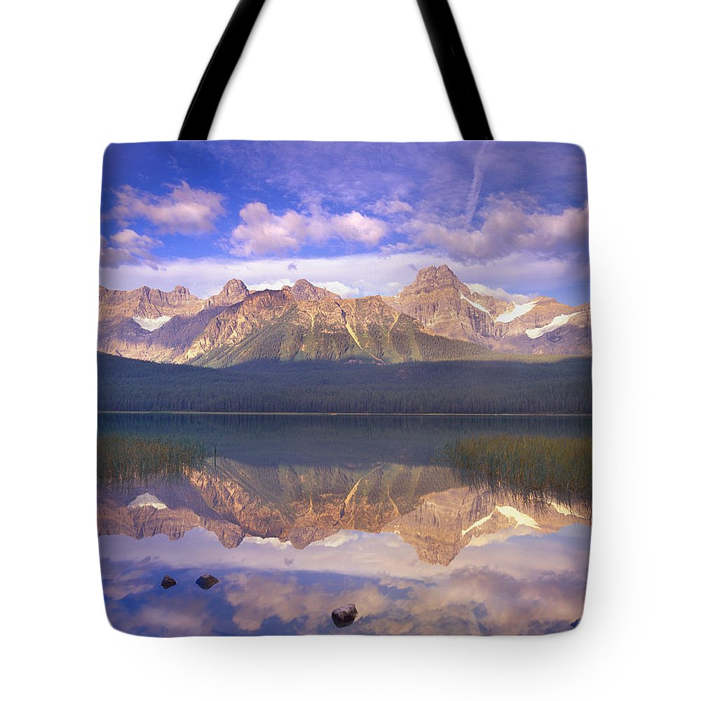 Alberta Tote Bag featuring the photograph Mount Chephren And Waterfowl Lake by Tim Fitzharris