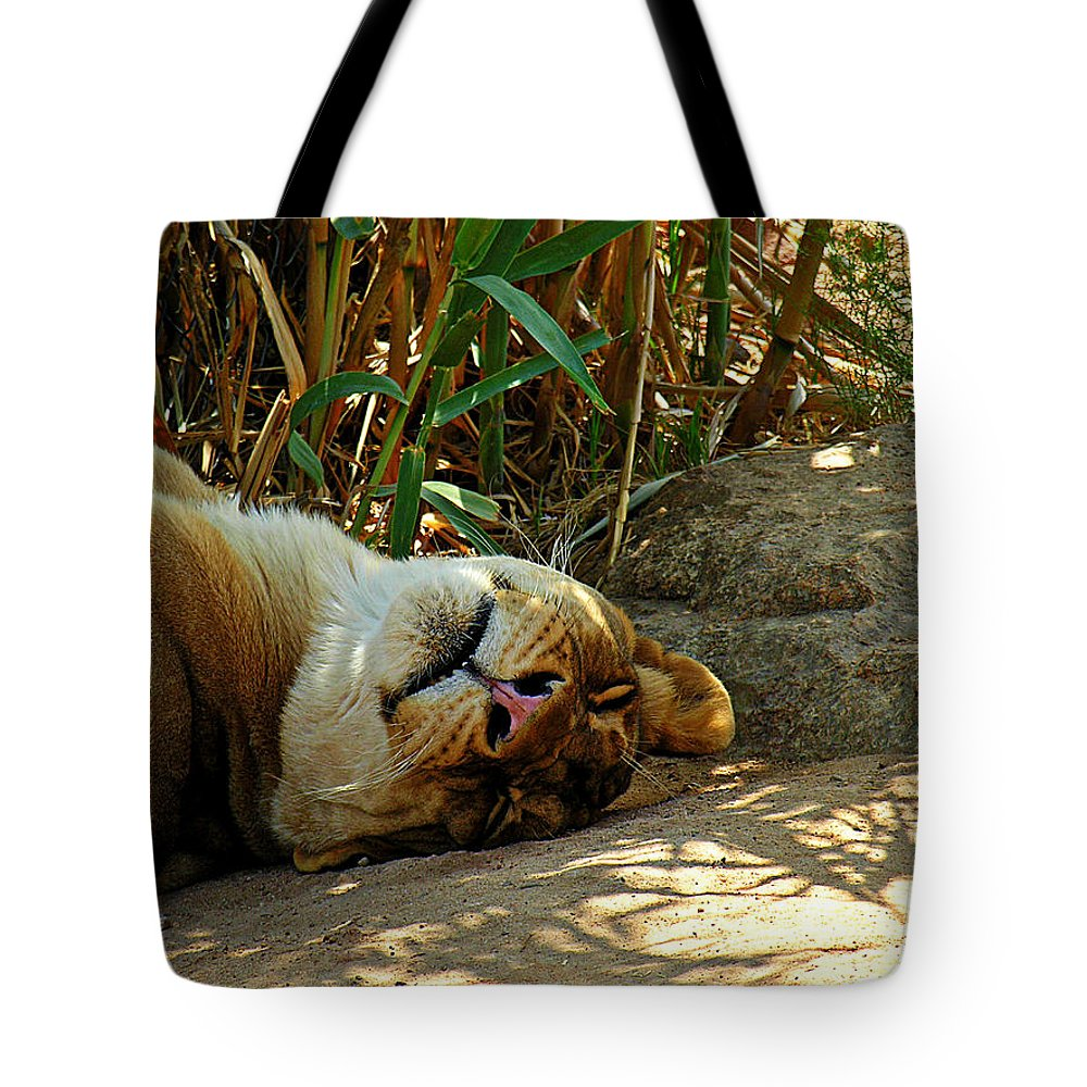Animal Tote Bag featuring the photograph Nap Time by Adam Vance