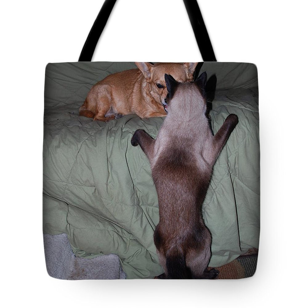 I'm Not Afraid Of You Tote Bag featuring the photograph Ninja And Foxy by Robert Floyd