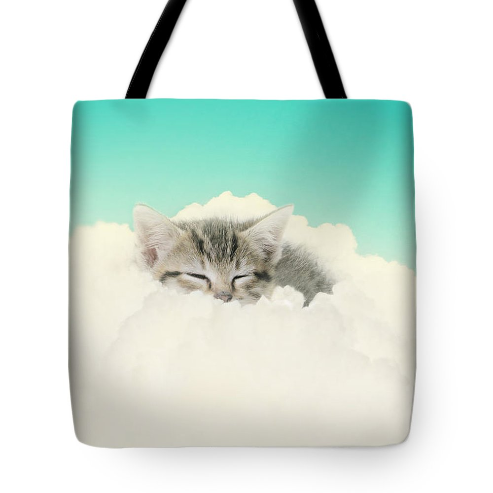Kitten Tote Bag featuring the photograph On Cloud Nine by Amy Tyler
