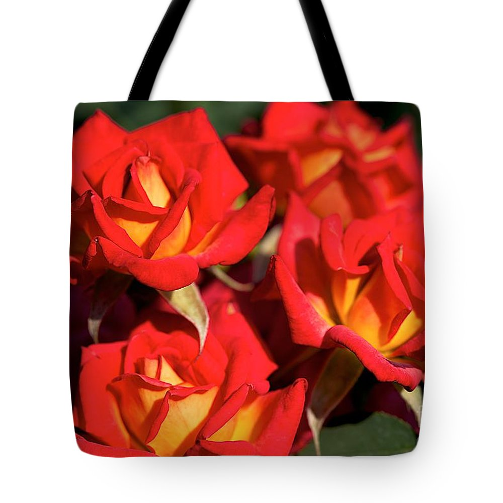 Red Flowers Tote Bag featuring the photograph Over by Joseph Yarbrough