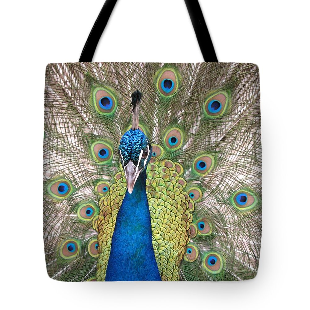 Peacock Tote Bag featuring the photograph Peacock Full Plumage by Ian Mcadie