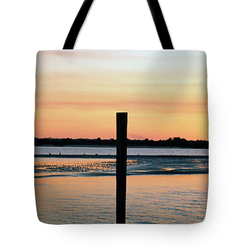 Photography Tote Bag featuring the photograph Pelicans Perching On A Pilings, Daytona by Animal Images