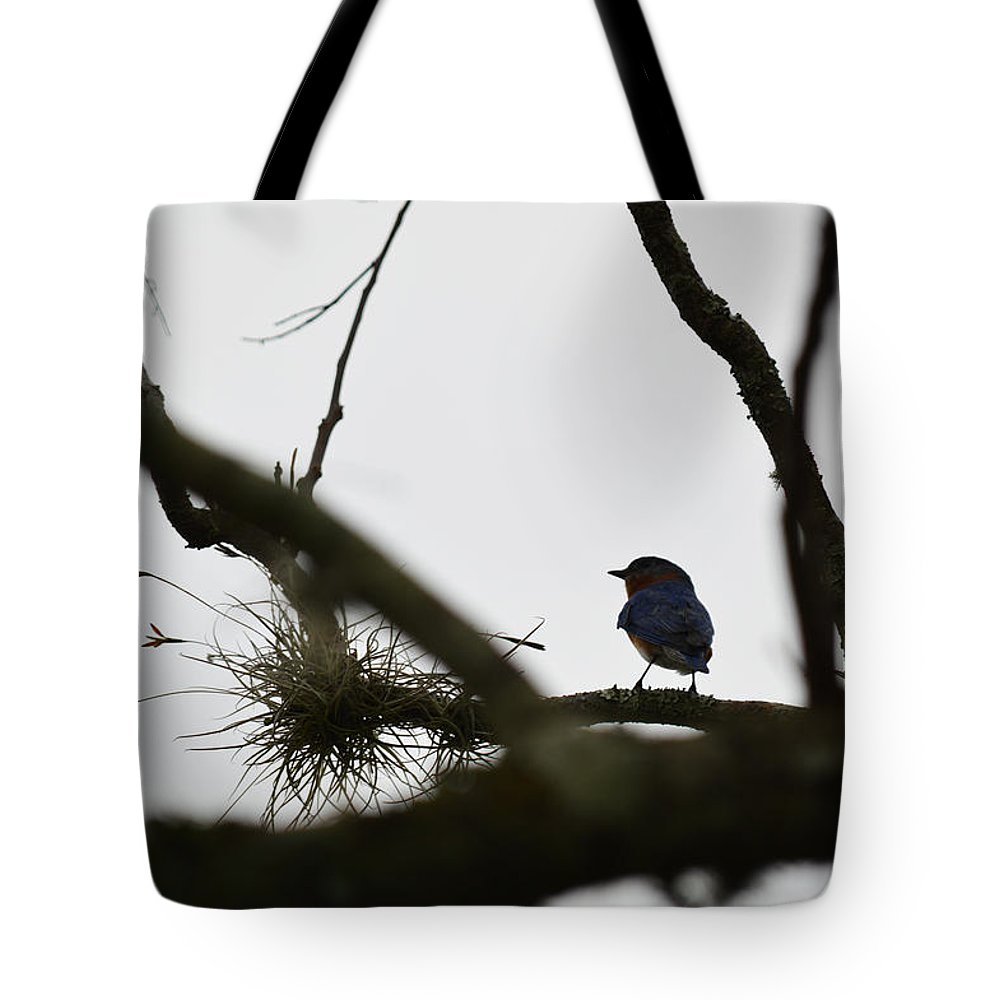 Blue Bird Tote Bag featuring the photograph Perched by Linda Kerkau