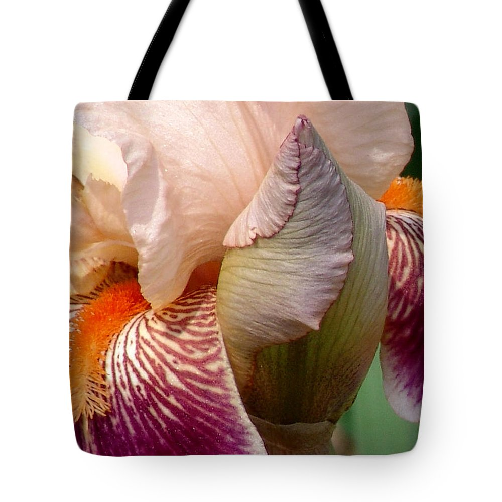 Pink Tote Bag featuring the photograph Pink And Purple Iris by David Hohmann
