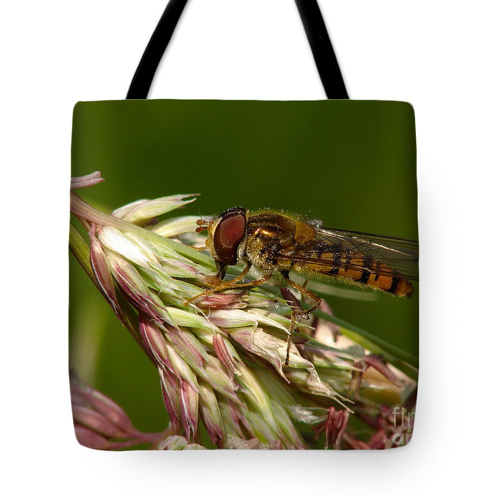 Hover Tote Bag featuring the photograph Pollinator by Brothers Beerens