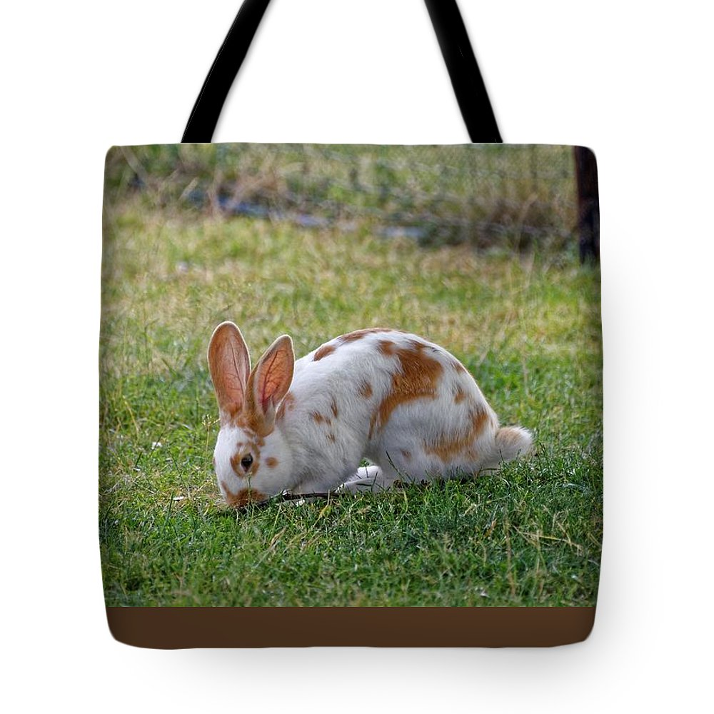 Rabbit Tote Bag featuring the photograph Rabbit by FL collection