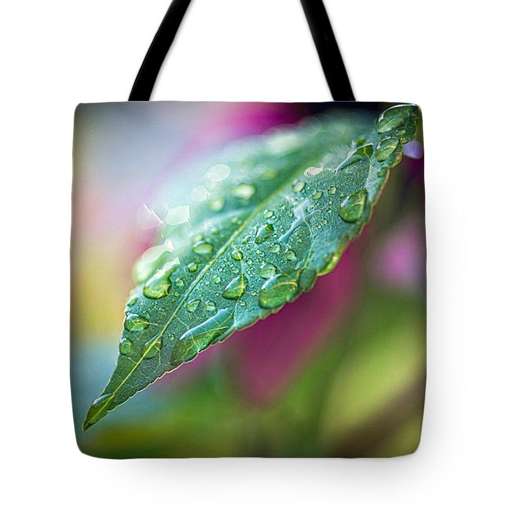 Rain Tote Bag featuring the photograph Raindrops 1 by Bob Orsillo