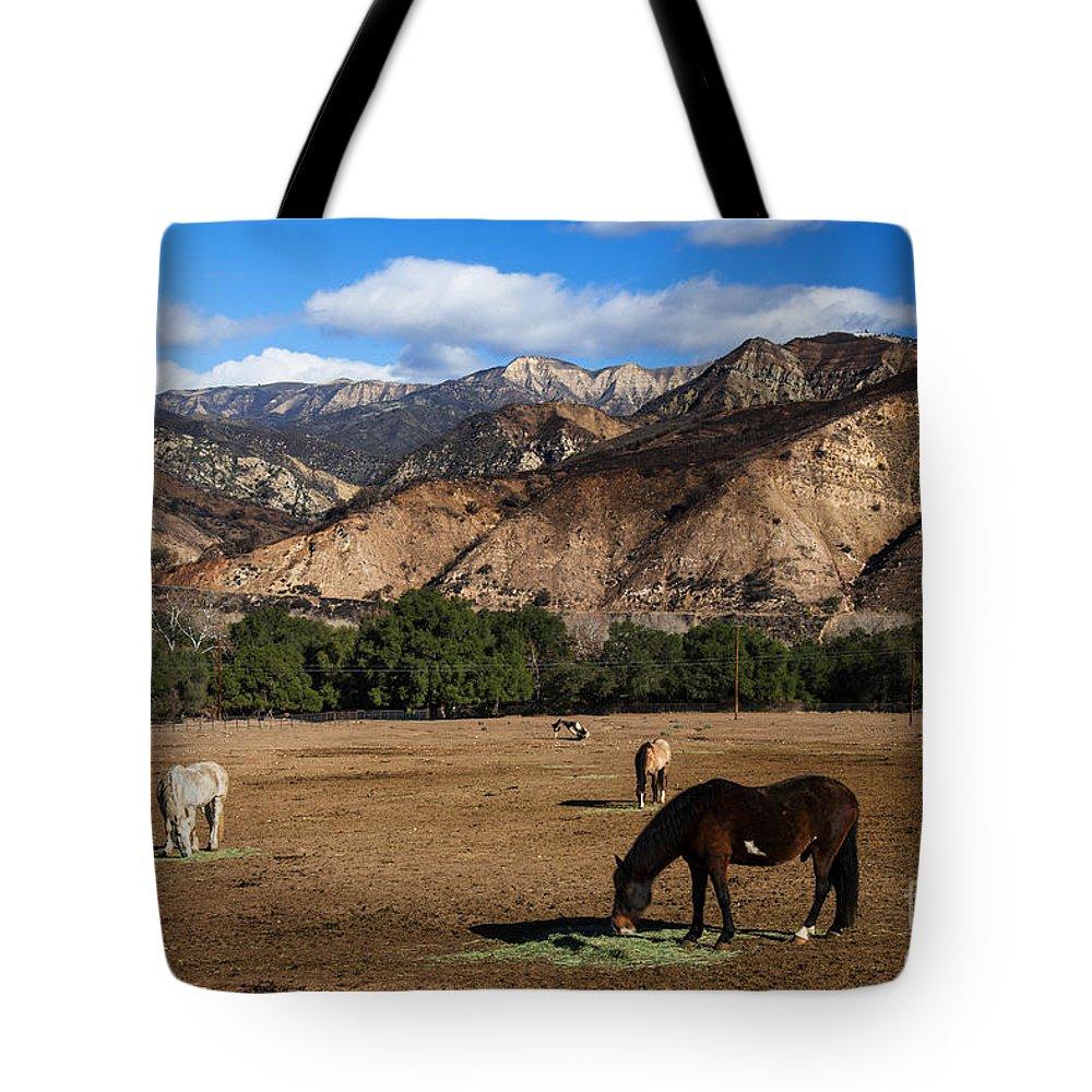 Rancho Oso Tote Bag featuring the photograph Rancho Oso - California by Yefim Bam