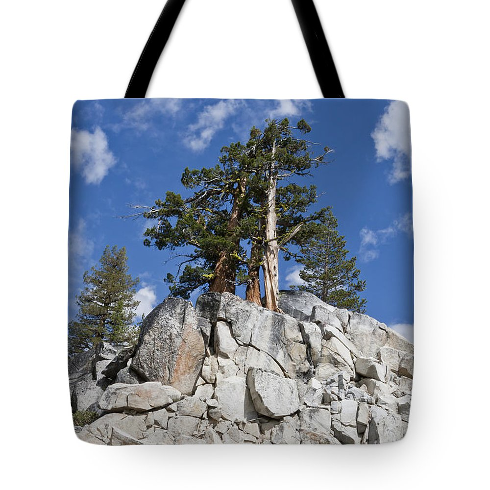 California Tote Bag featuring the photograph Reaching Toward The Sky by F Innes - Finesse Fine Art