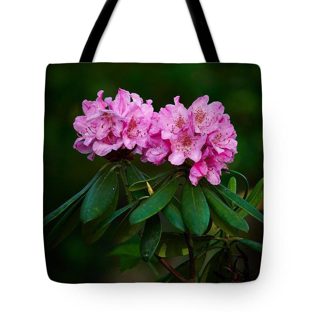 Lehto Tote Bag featuring the photograph Rhododendron by Jouko Lehto