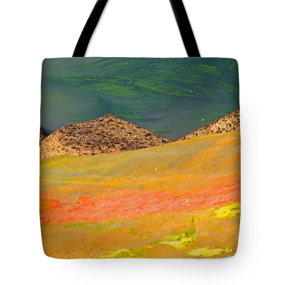 Water Tote Bag featuring the photograph Rock Art In Oregon by Kris Hiemstra