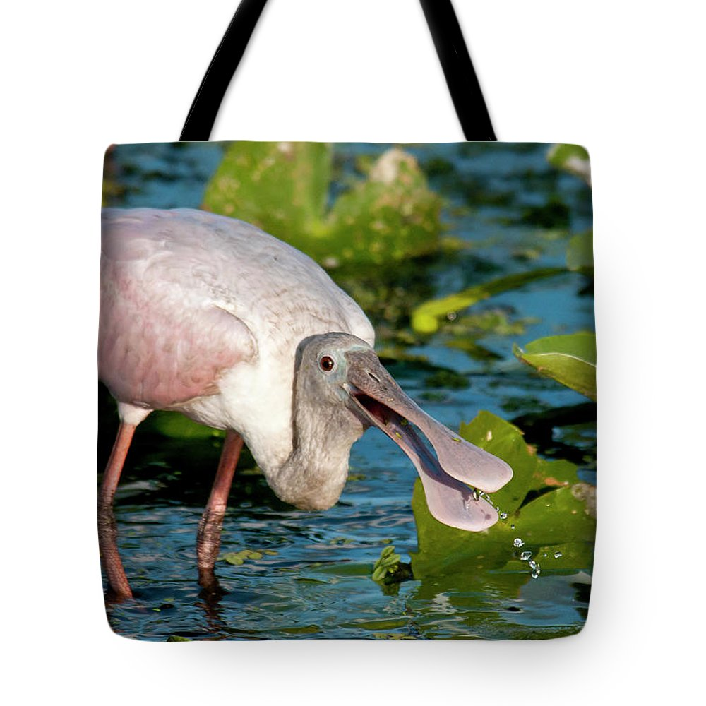 Animal Themes Tote Bag featuring the photograph Roseate Spoonbill by Mark Newman