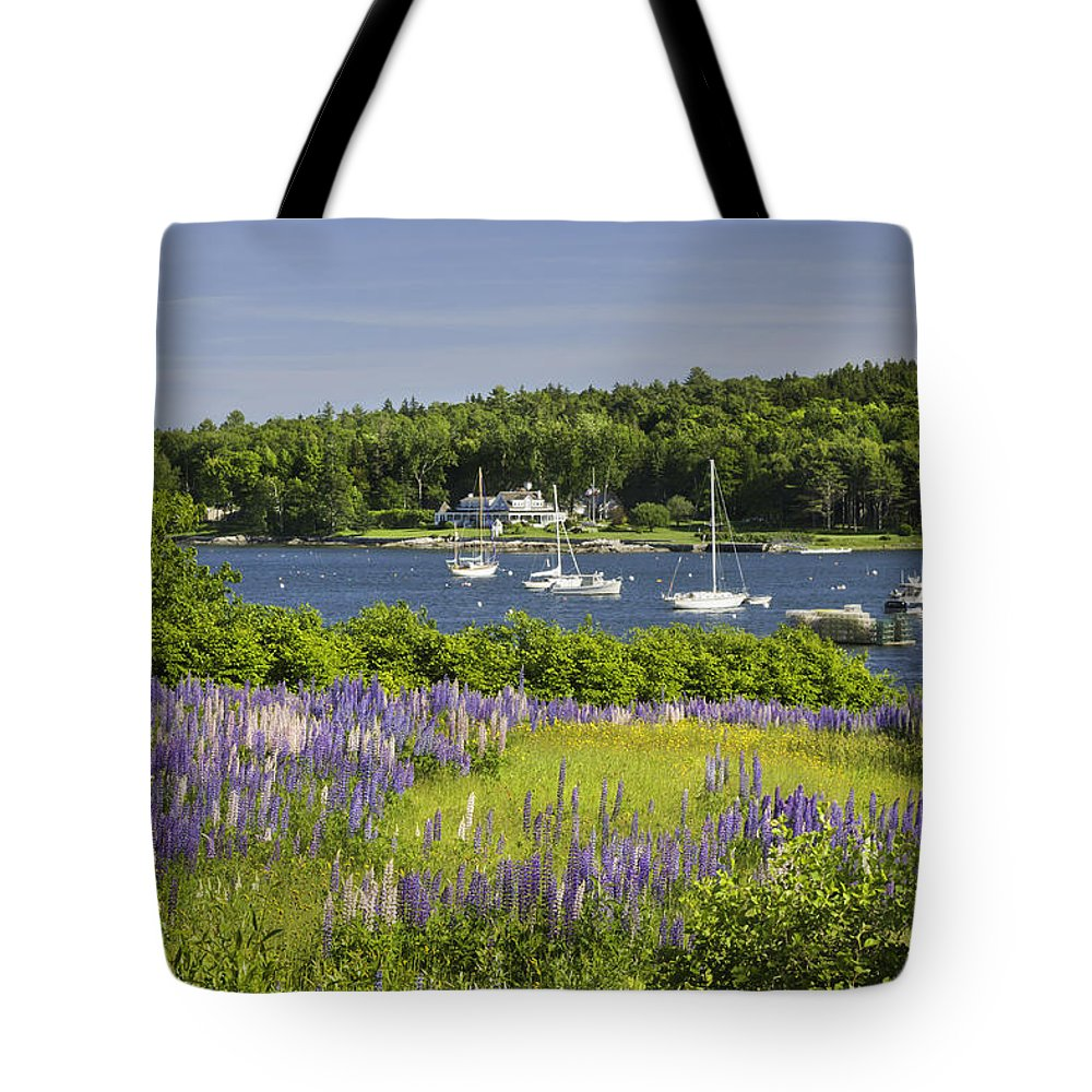 Maine Tote Bag featuring the photograph Round Pond Lupine Flowers On The Coast Of Maine by Keith Webber Jr