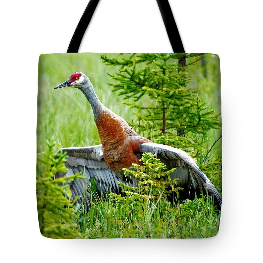 Alaska Tote Bag featuring the photograph Sandhill Crane by Clint Pickarsky