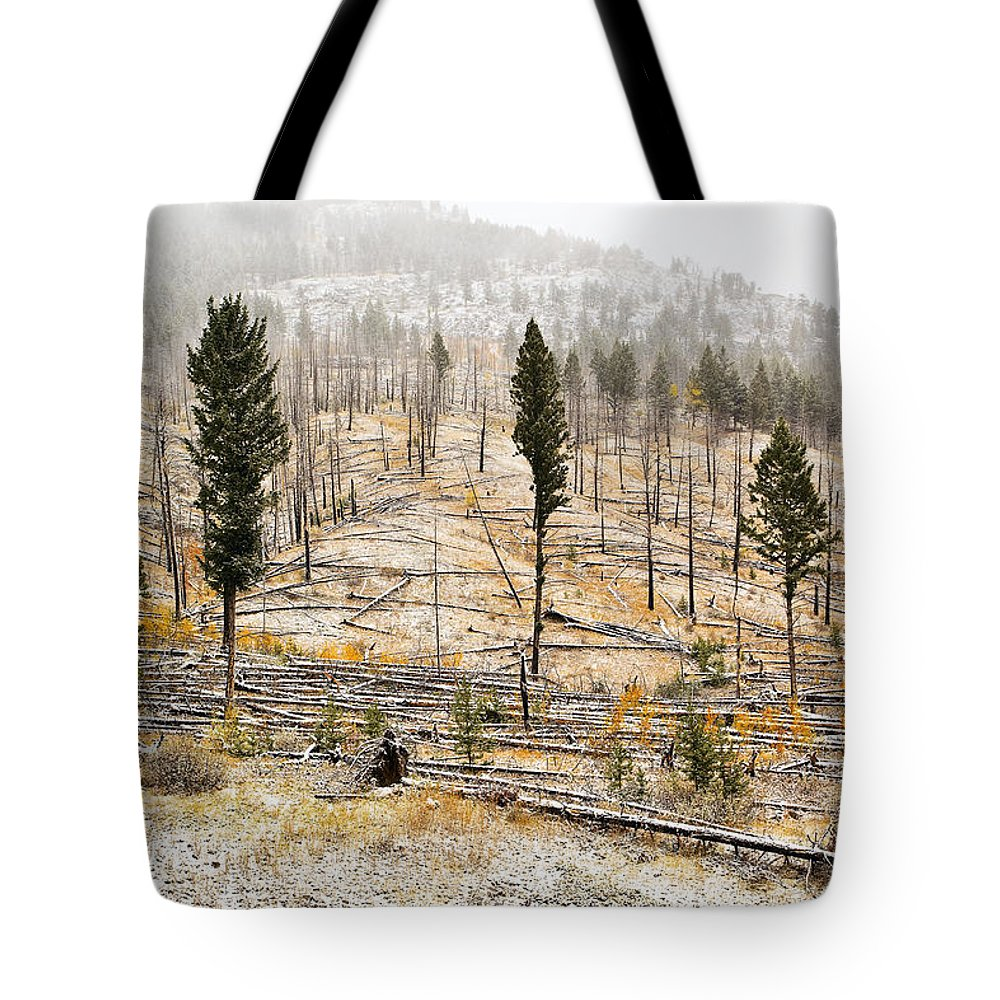 Bow Valley Parkway Tote Bag featuring the photograph Sawback Burn, On Bow Valley Parkway by Ken Gillespie