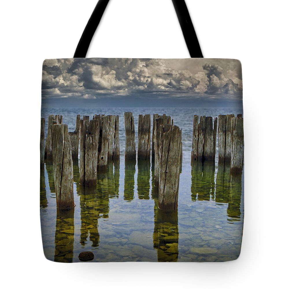 Art Tote Bag featuring the photograph Shore Pilings At Fayette State Park by Randall Nyhof