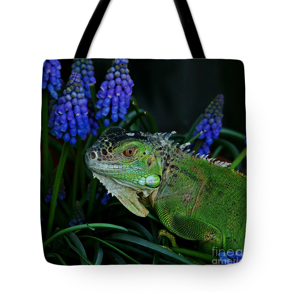 Iguana Tote Bag featuring the photograph The Night Of The Iguana by Binka Kirova