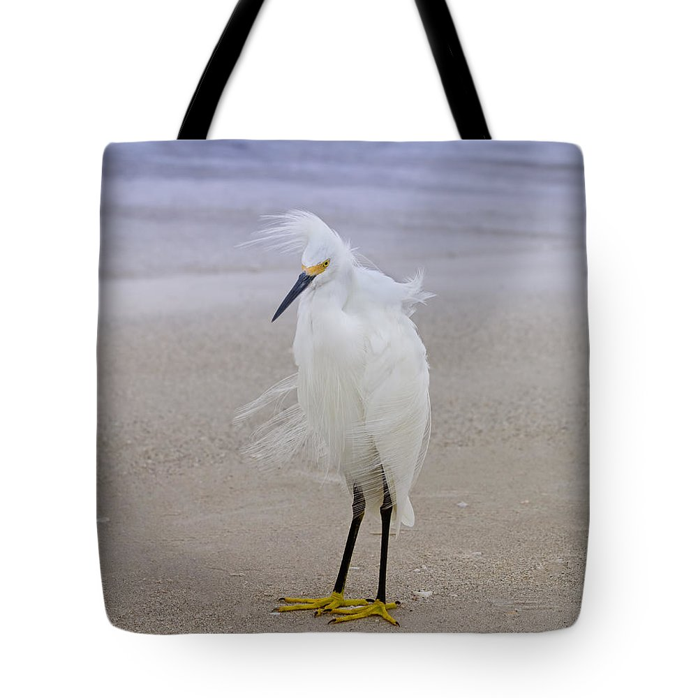 Egret Tote Bag featuring the photograph Snowy Egret At The Beach by Kim Hojnacki