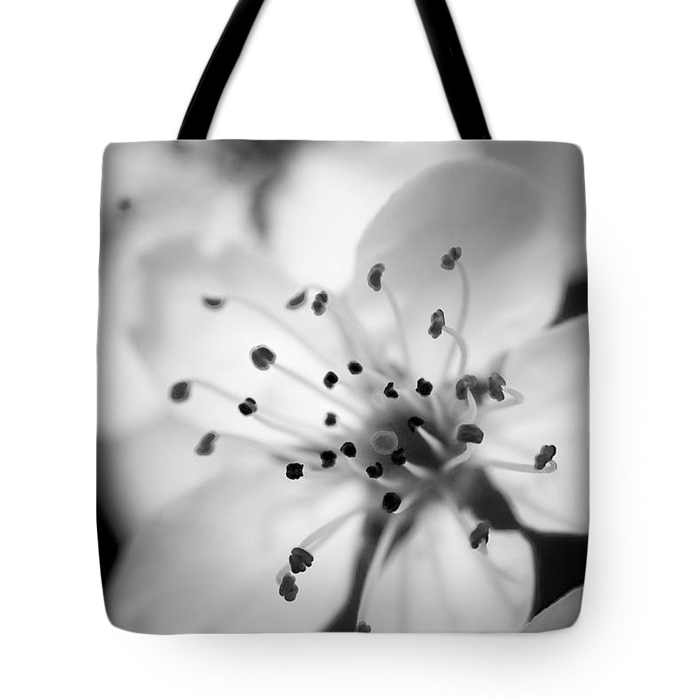 B&w Tote Bag featuring the photograph Spring Blooms 6692 by Timothy Bischoff