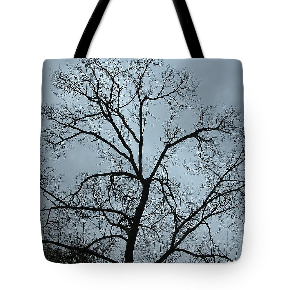 Trees Tote Bag featuring the photograph Stormy Trees by Guido Montanes Castillo