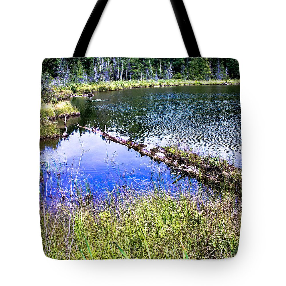Swamp Tote Bag featuring the photograph Swamp by Sherman Perry