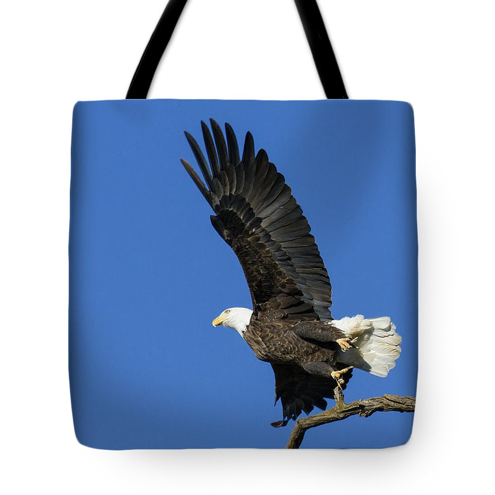 Eagle Tote Bag featuring the photograph Take Off 2 by David Lester