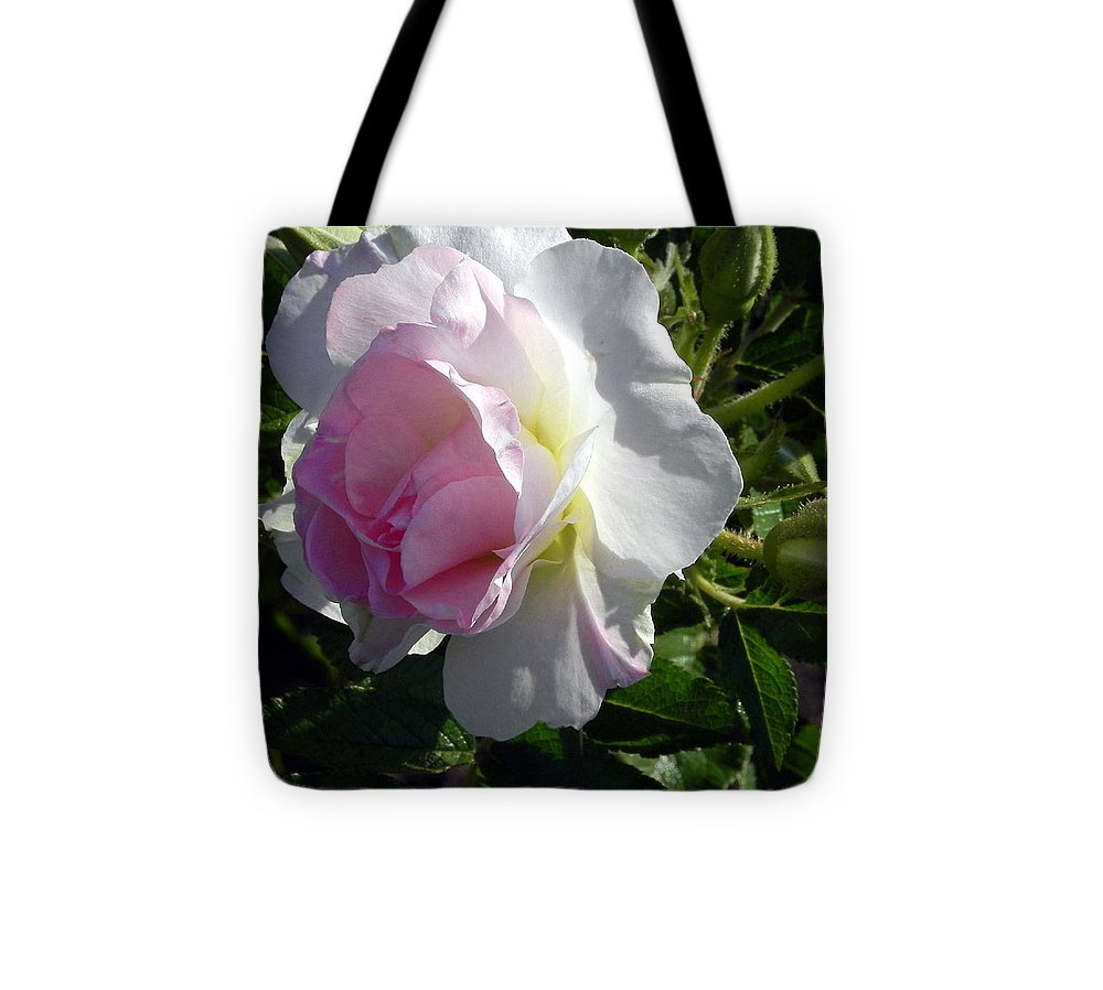 The Rose Tote Bag featuring the photograph The Rose by Joanne Rungaitis
