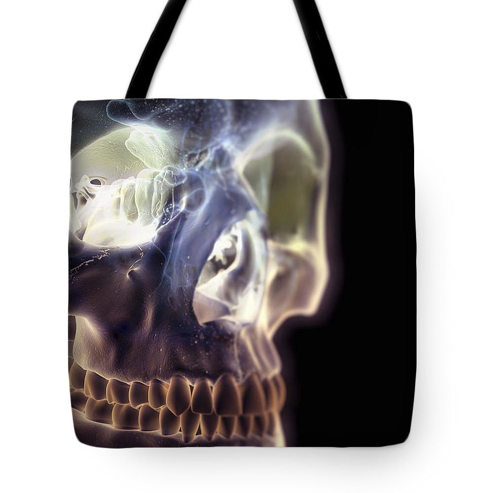 Anatomical Model Tote Bag featuring the photograph The Skull And Paranasal Sinuses by Science Picture Co