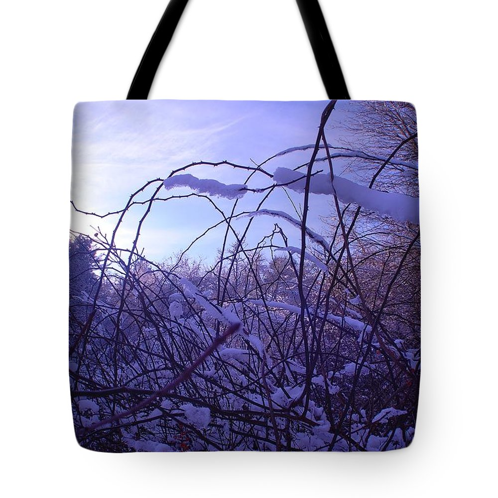 Snow Tote Bag featuring the photograph The View by Marysue Ryan