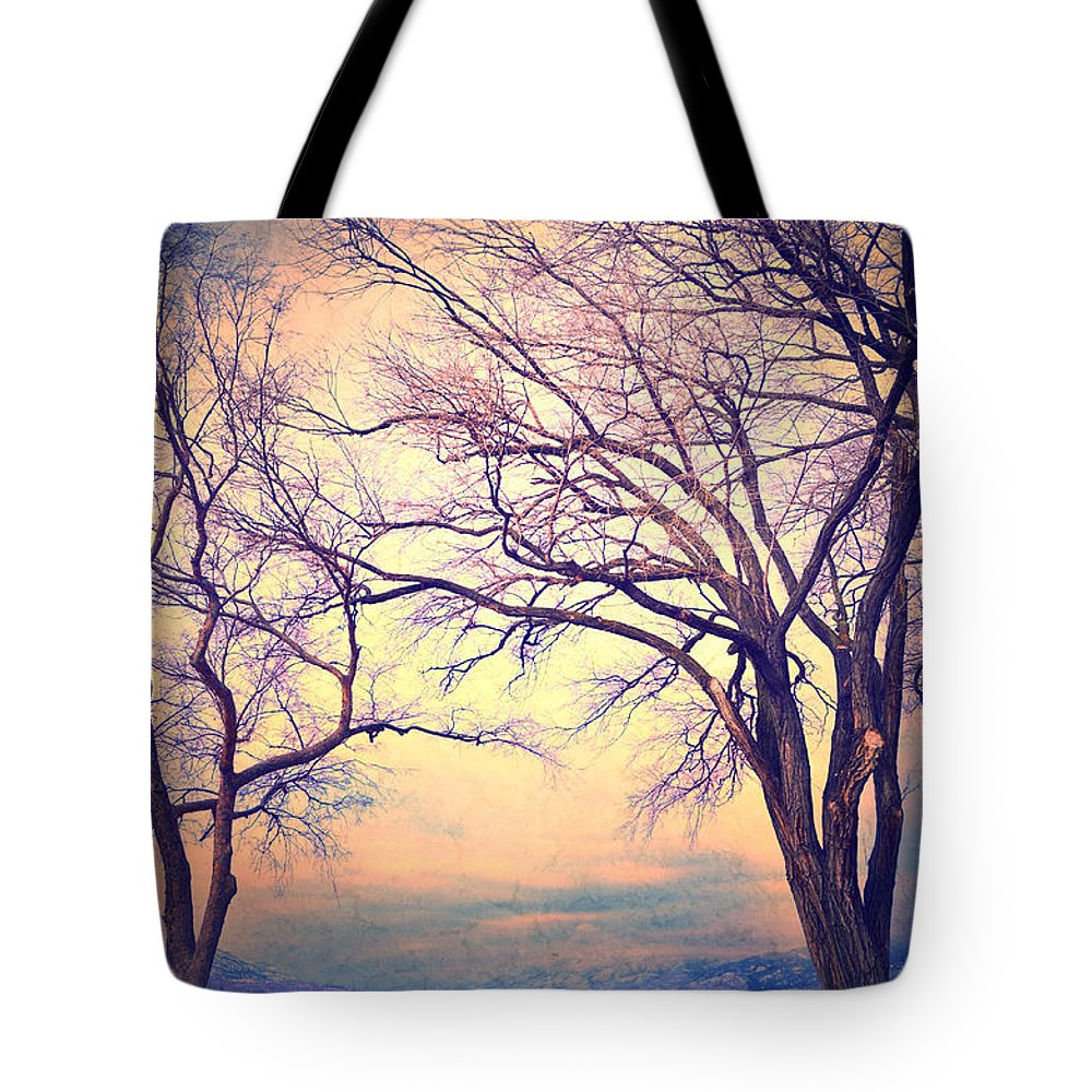 Bench Tote Bag featuring the photograph The Yesterday Bench by Tara Turner