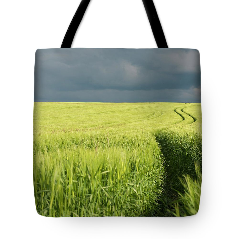 Tranquility Tote Bag featuring the photograph Tire Tracks In Grain Field by Thomas Winz