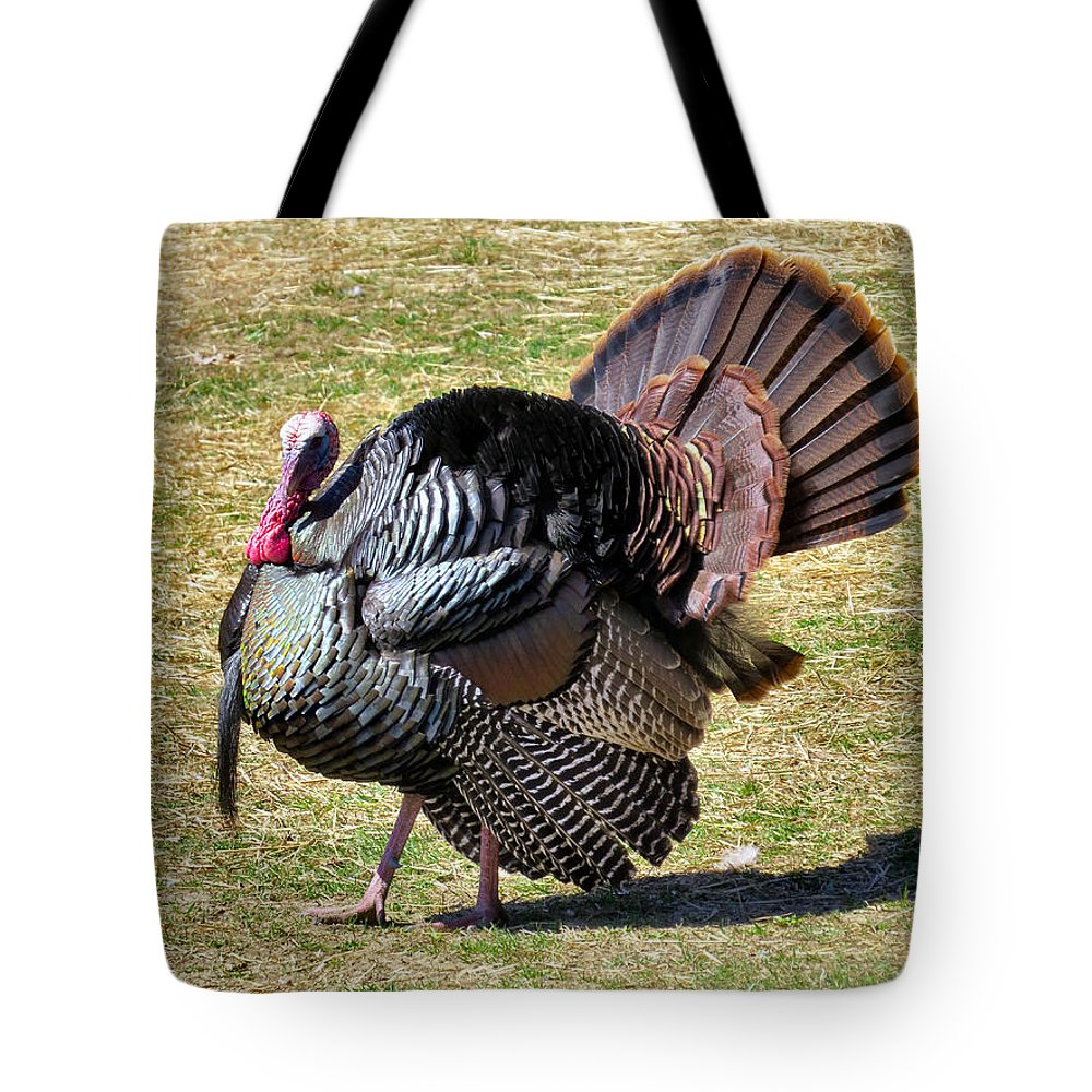 Chicken Tote Bag featuring the photograph Tom Turkey by Art Dingo