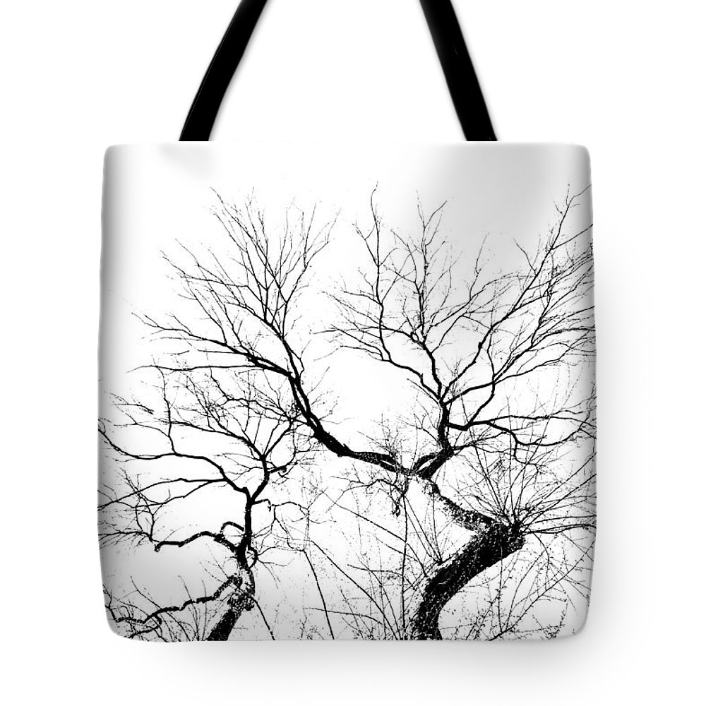Tree Tote Bag featuring the photograph Tree Impression #11 by Catherine Lau