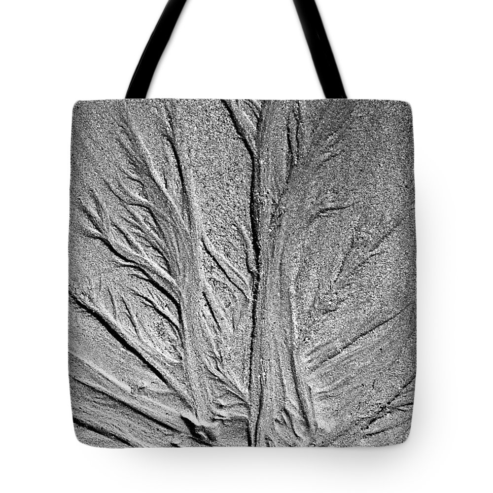 Beach Tote Bag featuring the photograph Tree Of Life by Glenn Gordon
