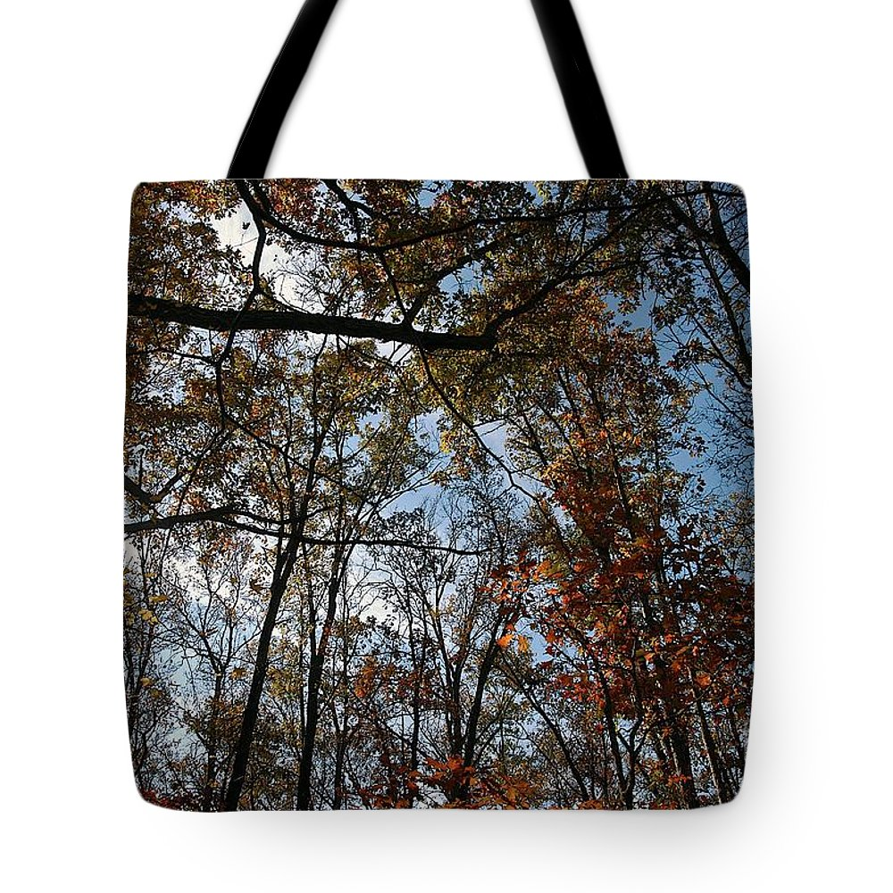 Fall Tote Bag featuring the photograph Up by Joseph Yarbrough