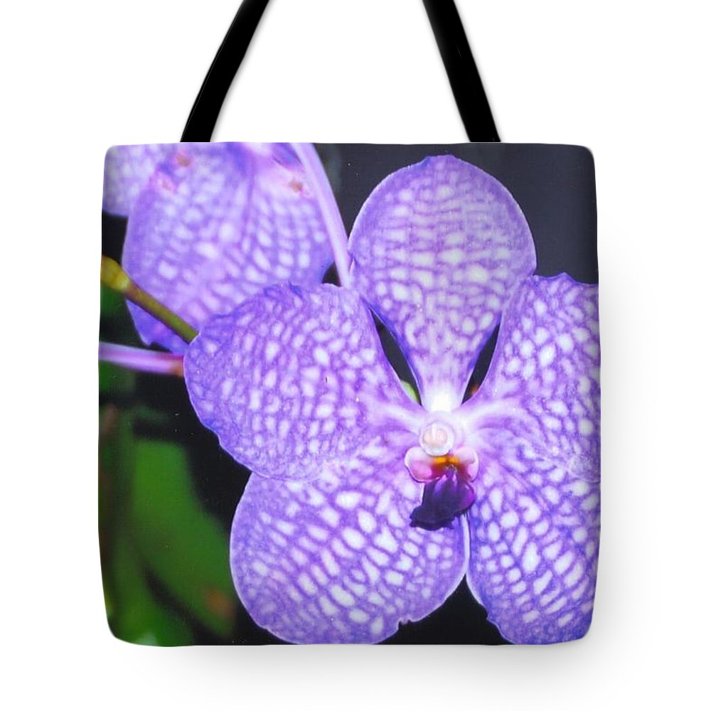 Homegrown Vanda Orchid Tote Bag featuring the photograph Vanda Orchid by Robert Floyd