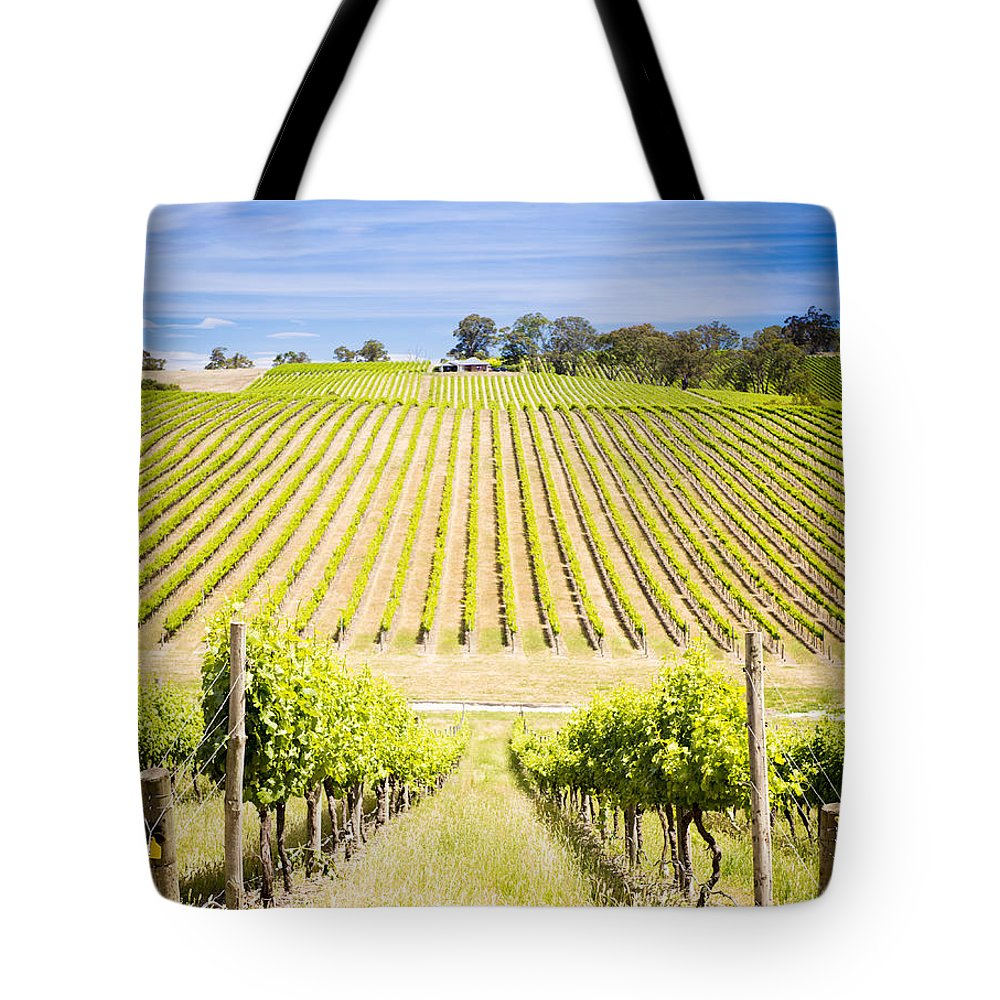Wine Tote Bag featuring the photograph Vineyard by Tim Hester