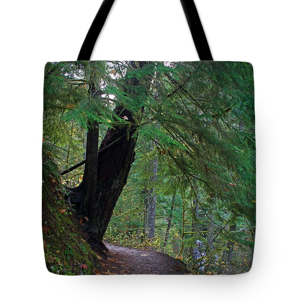 Forest Tote Bag featuring the photograph Wahclella Falls Trail by Tina Wentworth