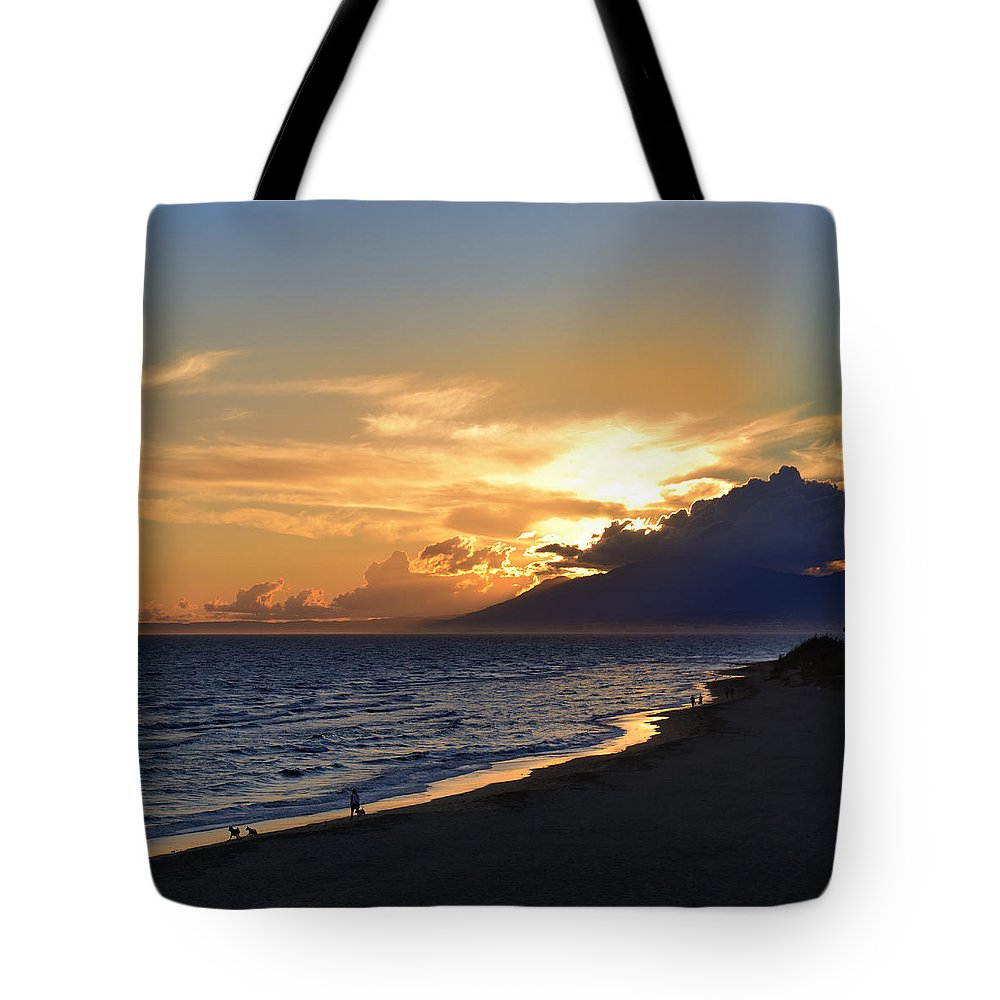 Water Tote Bag featuring the photograph Wandering by Guido Montanes Castillo