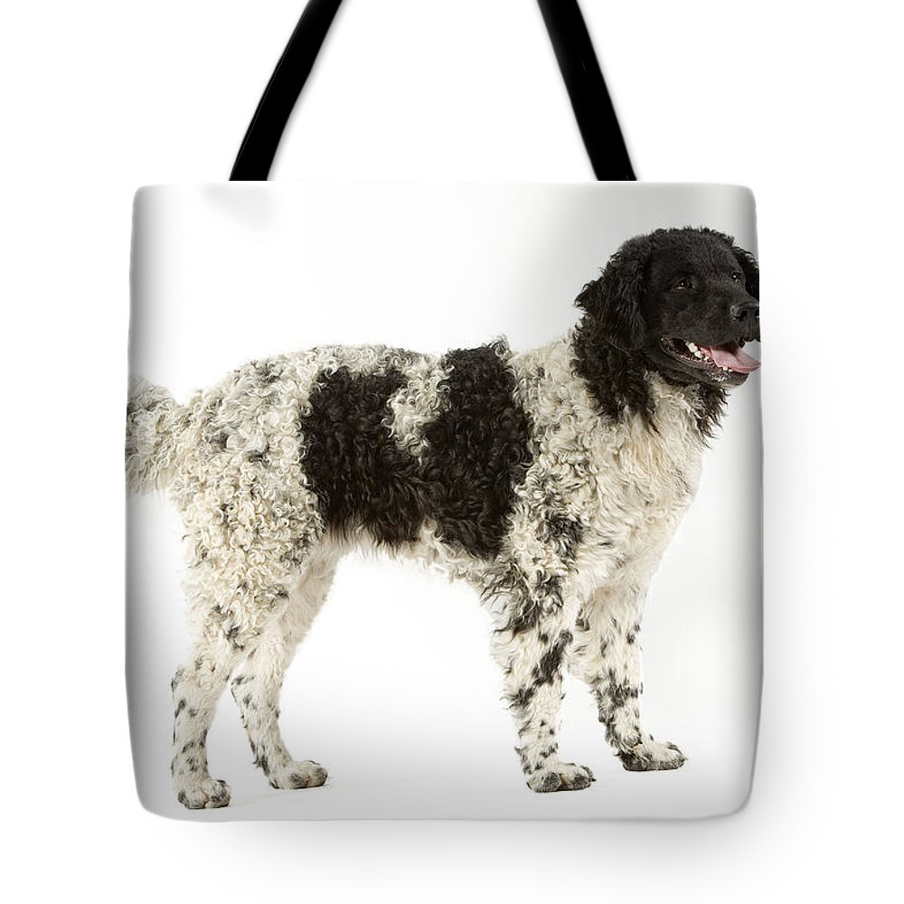 Water Dog Tote Bag featuring the photograph Water Dog by Jean-Michel Labat