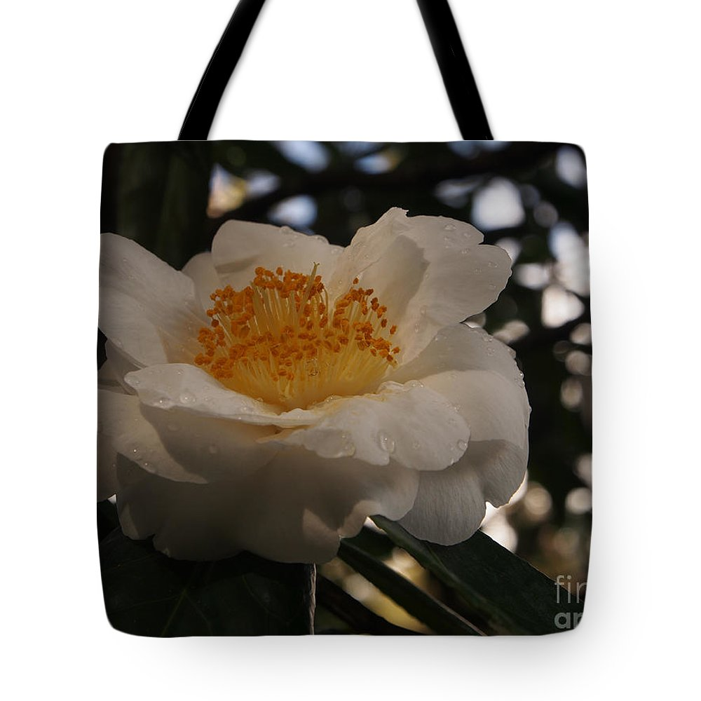 White Camellia Tote Bag featuring the photograph White Camellia by Jacklyn Duryea Fraizer